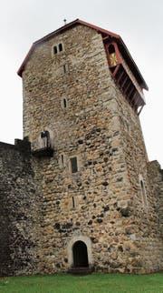 Joey Isenring ist oft auf der Burg anzutreffen. (Bild: Martin Knoepfel)