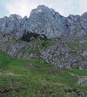 In diesem Gebiet stürzte der junge Bergsteiger ab. (Bild: Kapo SG)