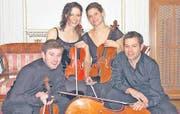 Das Elias-Alder-Quartett: (v. links) Joachim Tschann, Violine, Monica Tarcsay, Violine, Karoline Pilz, Viola, Stefan Susana, Violoncello. (Bild: pd)