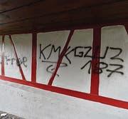 Mehrere Fassaden der Arboner Altstadt wurden besprayt. (Bild: Max Eichenberger)