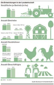 Die Toggenburger Landwirtschaft setzt auf grössere Flächen und mehr Nutzhühner. (Bild: Grafik: fr)