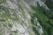 Beim Abstieg löste sich ein Stein, an dem sich die 30-Jährige festhielt. Die Frau stürzte daraufhin rund 25 Meter hinunter und blieb im auslaufenden Gelände liegen. (Bild: Kapo SG)