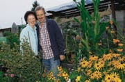 Glückliche Gewinner: Ehepaar Marietta und Trafalgar Reichmuth inmitten ihres biologischen Sieger-Gartens. (Bild: Fritz Heinze)