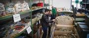Im Army-Liq-Shop im Zeughaus findet jeder etwas, ob Kälberstrick, Velopedale oder Kampfstiefel. (Bilder: Ralph Ribi)