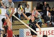 Volley Toggenburg reitet nach dem Sieg gegen Steinhausen weiter auf einer Erfolgswelle. (Bild: Reinhard Kolb)
