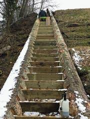 Mit einer steilen Treppe werden zehn Höhenmeter überwunden, weshalb der Thur-Wanderweg für Kinderwagen nicht geeignet ist. (Bild: PD)