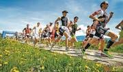 Rheintal-Duathlon: Neben Frühlingswiesen dem Ziel entgegen (Bild: pd)