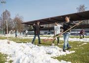 Flüchtlinge schaufeln das Spielfeld im Paul-Grüninger-Stadion frei. (Bild: Urs Bucher)