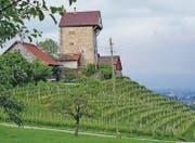 Hoch über Lüchingen thront die Burg Neu Altstätten, ein Wahrzeichen des St. Galler Rheintals. (Bild: pd)