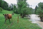 Bei starken Regenfällen vom Sitter-Hochwasser betroffen ist unter anderem das Gebiet rund ums Tierheim Sitterhöfli in Engelburg. (Bild: Coralie Wenger (22. Juli 2014))