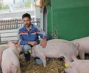 Der Landwirt Ralph Anderes kümmert sich um die Rennsäuli und hilft während der Olma-Zeit im Bogenzelt. (Bild: Sheila Eggmann)
