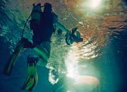 Der Kameramann filmt für einmal unter der Wasseroberfläche. (Bild: pd)