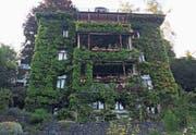 Bewachsen: Das Haus an der Zwinglistrasse 30 wurde 1897 von den St. Galler Architekten Scheier & Dürtscher erbaut. Es galt damals als «Haus für den einfachen Mann».