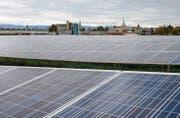 Solarpark im waadtländischen Payerne. Auch in der Solarindustrie finden Vakuumventile der VAT Group Verwendung. (Bild: ky/Jean-Christophe Bott)