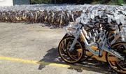 Die O-Bikes stehen auf dem Parkplatz einer Garage an der Langgasse bereit. Ab wann sie zum Einsatz kommen, ist unklar. (Bild: Nina Rudnicki)