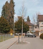 Die Aufhebung der Baumgrube an der Lindenstrasse soll im Rahmen des Sanierungsprojekts «Fussgängerquerung» 2018 geprüft werden. (Bild: Andrea Häusler)
