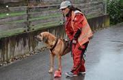 Die Rheintaler Hundestaffel ist auf Spurensuche spezialisiert. Hauptinstrument ist dabei das Riechvermögen des Hundes. (Bild: Roland Jäger)