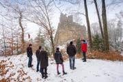 Ein halbes Dutzend Häggenschwilerinnen und Häggenschwiler liessen sich am Samstag das Projekt zur Sicherung der Ruine Ramschwag erklären. (Bild: Urs Bucher)