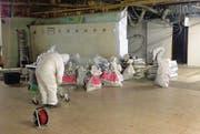 Hermetisch abgeriegelt: Bauarbeiter in spezieller Schutzkleidung entfernen im Küchenbereich des Migros-Restaurants asbesthaltiges Material. (Bild: pd)