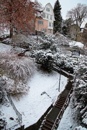 Der Falkenburgweg: Dort, wo vor kurzem die Buchsbäume standen, liegt heute Schnee. (Bild: Christina Weder)