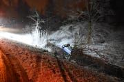In Niederwil verletzte sich eine Frau, als sie mit ihrem Auto in einen Bach stürzte. (Bild: Kapo)