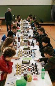 Höchst konzentriert: Junioren am Schachturnier 2015. (Bild: PD)