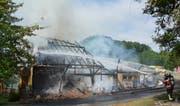 Beim Brand des Bauernhauses wurde niemand verletzt. (Bild: Kapo TG)