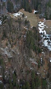 Ein Zug des Sturms Burglind zog von Starkenbach in Richtung Gamplüt-Gulmen und richtete grossen Schaden im Wald an.