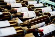 Mit dem Weingut in Chile wurde das Angebot an Rotweinen erweitert und ergänzt. Vor allem um Sorten, die in der Schweiz weniger gut reifen. (Bild: Mareycke Frehner)