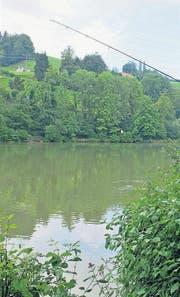 Am Gübsensee zog ein Fischer vergangene Woche . . . (Archivbild: Coralie Wenger)
