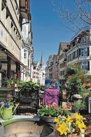 Schmuck: Die Gartenbauer und Floristen haben die Schaugärten, die im ganzen Städtli verteilt sind, mit viel Liebe gestaltet. Diesen hier findet man in der Marktgasse. (Bild: Max Tinner)
