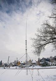 Die in der ersten Instanz bewilligte Antenne im Gebiet Büel soll 30 Meter hoch werden. (Bild: Urs Bucher)