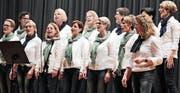 Das extra für die Hauptversammlung gegründete Chörli der Frauengemeinschaft sorgte für das Unterhaltungsprogramm. (Bild: pd)