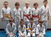 Erfolgreich schnitten die Judokas des JJJC Rheintal am Turnier in Ruggell ab. (Bild: pd)
