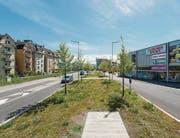 Baumreihen prägen die neue Kantonsstrasse in Arbon. Sie verbindet den Stahelplatz (oben links) mit der neuen Stadtmitte am Bahnhof und dem Areal Saurer Werk 2 (unten rechts). (Bilder: Hanspeter Schiess)