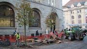 Zur Aufwertung des umgestalteten Bahnhofplatzes werden derzeit einzelne Bäume gepflanzt. (Bild: Katharina Schatton)