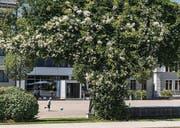 Gutes Bauen Ostschweiz, Wechselflorrabatten und Pärke: Ostfriedhof, Stadtpark, Brühl, Grabenpärkli, Leonhardspärkli. (Bild: Hanspeter Schiess)