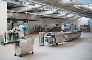 Der Verarbeitungsbereich der Melander-Fischfarm, kurz vor der definitiven Schliessung im Jahr 2011. Hier will die Rorschacher Swiss Pharma Trade AG künftig legalen CBD-Hanf anbauen. (Bild: Urs Jaudas)