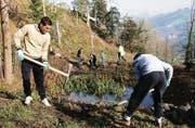 Junioren des FC Winkeln helfen mit, den Zu- und Abfluss zum Amphibienweiher im Schaugenrain instand zu stellen. (Bild: pd/Naturschutzverein Stadt St. Gallen)