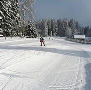Noch ist nicht gespurt. Die Loipenbetreiber der Panoramaloipe im Scherb/Bendel warten noch auf etwas mehr Schnee. (Bild: PD)