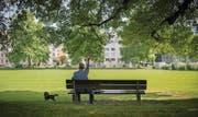 Die einzige grössere Grünfläche im Quartier Lachen ist die Sömmerliwiese. Die Stadt plant hier einen Tageshort für 180 Kinder aus den Schulhäusern Feldli und Schönenwegen. (Bild: Benjamin Manser)
