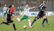 Mit Raphael Hubers Geschwindigkeit haben die Gegner Mühe (hier gegen Köniz am vergangenen Wochenende). (Bild: Kurt Frischknecht)