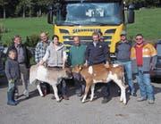 Die Gewinner, die Züchter der beiden Kälber und die Sponsoren bei der Preisübergabe. (Bild: PD)