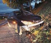 Das Auto kam in der Böschung zum Stillstand. (Bild: Kapo)