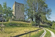 Schloss Blatten: Vor gut 200 Jahren in einem Feuergefecht zwischen Franzosen und Österreichern zerstört, aber heute noch Wahrzeichen der Gemeinde Oberriet. (Bild: Max Tinner)