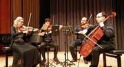 Präzision und Hingabe: die vier ausgeprägten Musikerpersönlichkeiten in Aktion. (Bilder: Peter Küpfer)
