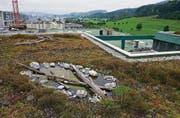 Vorne das sanierte Flachdach mit Naturlandschaft aus Schwemmholz und Teichen, im Hintergrund wird das letzte Teilstück noch saniert. (Bild: Coralie Wenger)