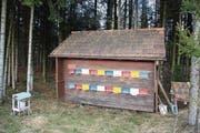 Dieses Bienenhaus im Lörwald wurde beschossen. (Bild: Simon Dudle)