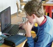 Die Lernenden hatten in der Schule Gelegenheit, an ihren Projekten zu feilen, investierten jedoch auch Freizeit in die Arbeiten. (Bild: PD)