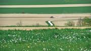 Ein Bauer bewirtschaftet einen Acker im Kanton Thurgau. (Bild: Donato Caspari (Ottoberg, 11. April 2017))